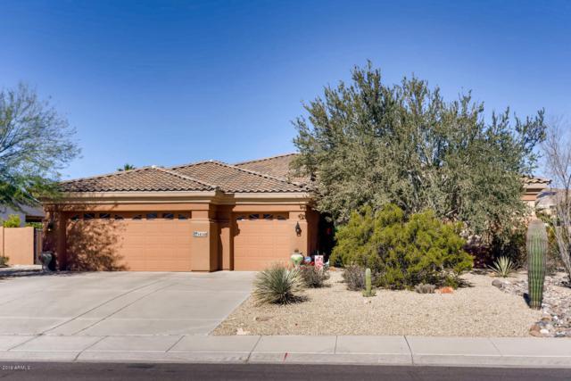 14146 W Greentree Drive, Litchfield Park, AZ 85340 (MLS #5880857) :: The W Group
