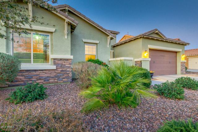 2204 E Everglade Lane, Gilbert, AZ 85298 (MLS #5880923) :: Lucido Agency