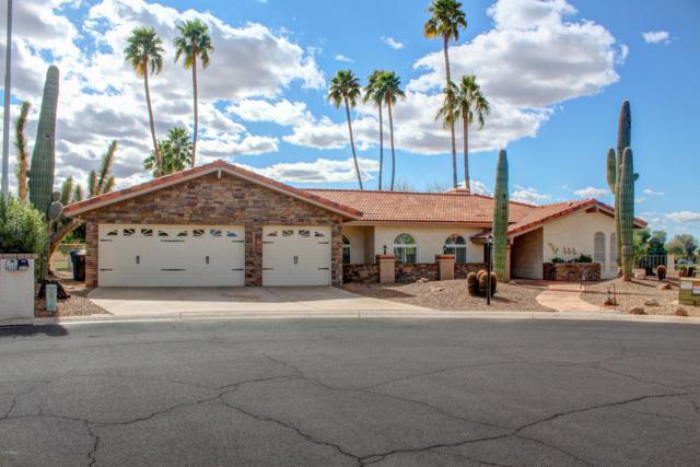 6349 E Camelot Drive, Mesa, AZ 85215 (MLS #5880952) :: Occasio Realty