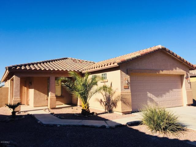 24960 W Dove Mesa Drive, Buckeye, AZ 85326 (MLS #5880953) :: The Everest Team at My Home Group