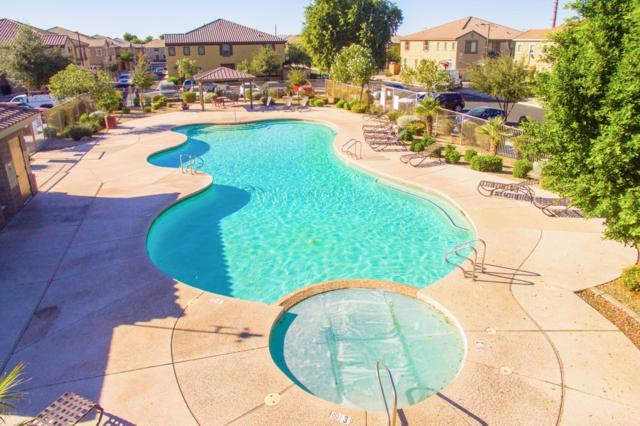 1460 N 80TH Drive, Phoenix, AZ 85043 (MLS #5880975) :: CANAM Realty Group
