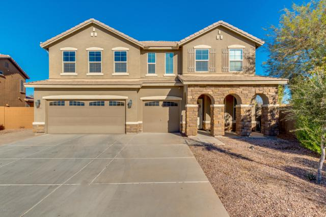 17026 W Hilton Avenue, Goodyear, AZ 85338 (MLS #5880987) :: Occasio Realty