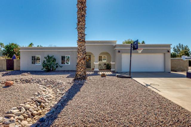 5301 E Friess Drive, Scottsdale, AZ 85254 (MLS #5881007) :: Arizona 1 Real Estate Team