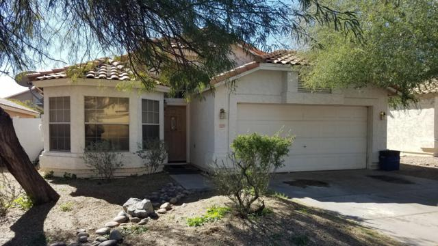 3229 E Brookwood Court, Phoenix, AZ 85048 (MLS #5881018) :: The Everest Team at My Home Group