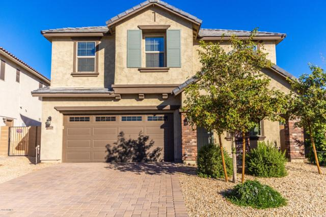 13220 W Tether Trail, Peoria, AZ 85383 (MLS #5881039) :: Yost Realty Group at RE/MAX Casa Grande