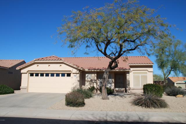 14308 W Wagon Wheel Drive, Sun City West, AZ 85375 (MLS #5881049) :: The W Group