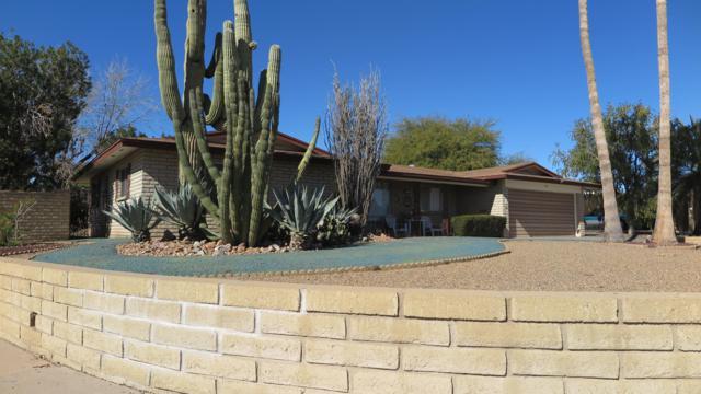 228 N 58TH Place, Mesa, AZ 85205 (MLS #5881066) :: Yost Realty Group at RE/MAX Casa Grande