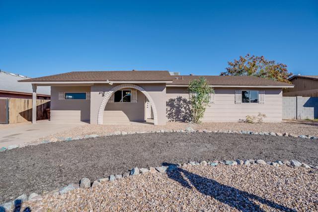 736 W 17TH Avenue, Apache Junction, AZ 85120 (MLS #5881133) :: Yost Realty Group at RE/MAX Casa Grande