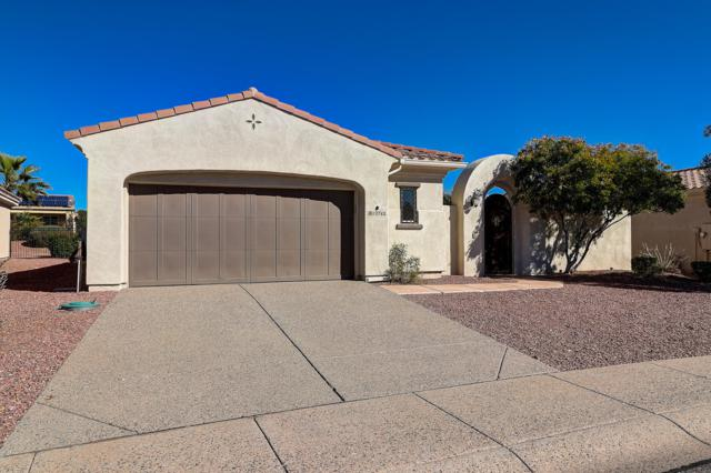 13762 W Nogales Drive, Sun City West, AZ 85375 (MLS #5881138) :: Arizona 1 Real Estate Team