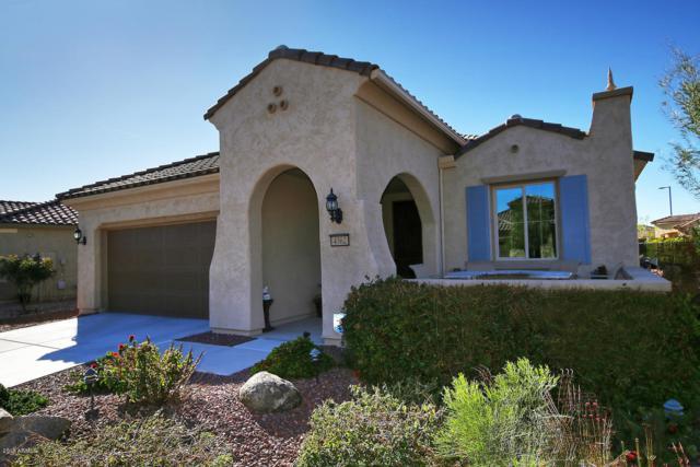 4362 N Monticello Drive, Florence, AZ 85132 (MLS #5881140) :: The Pete Dijkstra Team