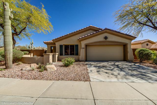 2396 W Firethorn Way, Anthem, AZ 85086 (MLS #5881144) :: The W Group