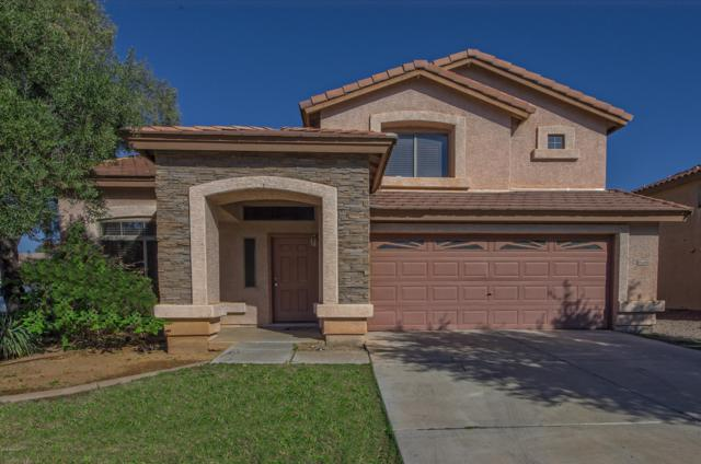 10680 W Willow Lane, Avondale, AZ 85392 (MLS #5881171) :: The W Group
