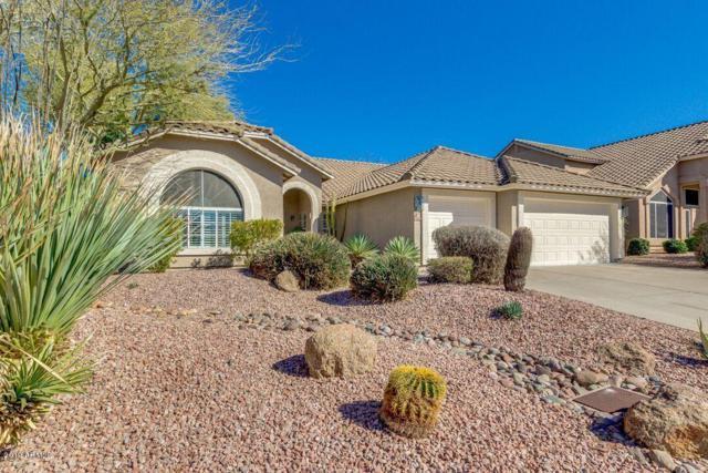 3807 N Kings Peak, Mesa, AZ 85215 (MLS #5881219) :: The Property Partners at eXp Realty