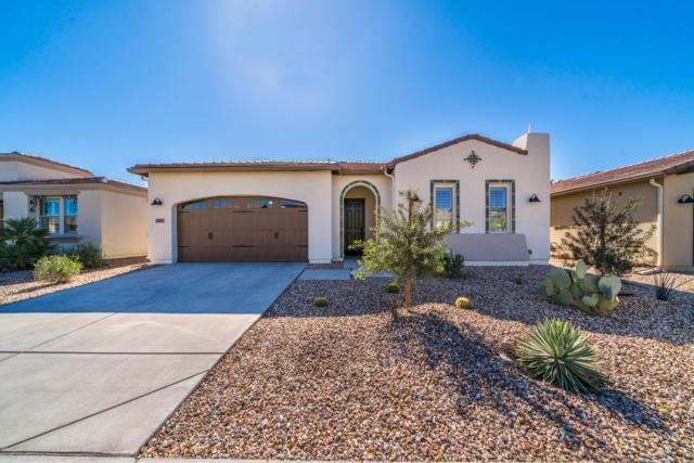 1367 E Verde Boulevard, San Tan Valley, AZ 85140 (MLS #5881355) :: The Daniel Montez Real Estate Group