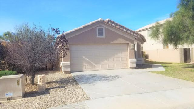 16202 N 161ST Lane, Surprise, AZ 85374 (MLS #5881356) :: Gilbert Arizona Realty