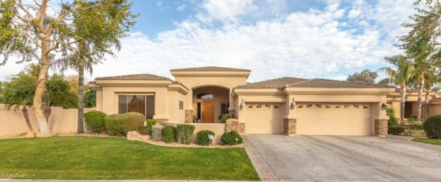 4601 S Ambrosia Court, Chandler, AZ 85248 (MLS #5881508) :: Devor Real Estate Associates