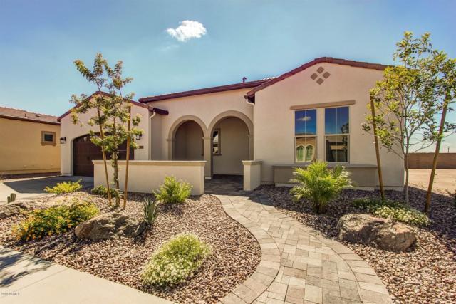 129 E Kennedia Drive, San Tan Valley, AZ 85140 (MLS #5881528) :: The Daniel Montez Real Estate Group