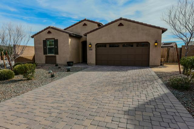 12917 W Caraveo Place, Peoria, AZ 85383 (MLS #5881575) :: Cindy & Co at My Home Group