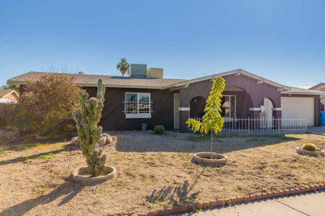 4745 W Columbine Drive, Glendale, AZ 85304 (MLS #5881583) :: CC & Co. Real Estate Team