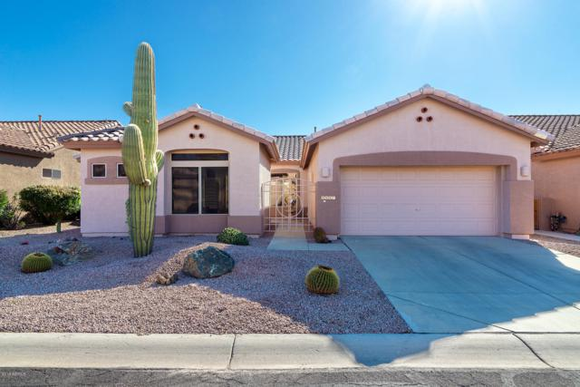 5487 S Red Yucca Lane, Gold Canyon, AZ 85118 (MLS #5881620) :: The Everest Team at My Home Group