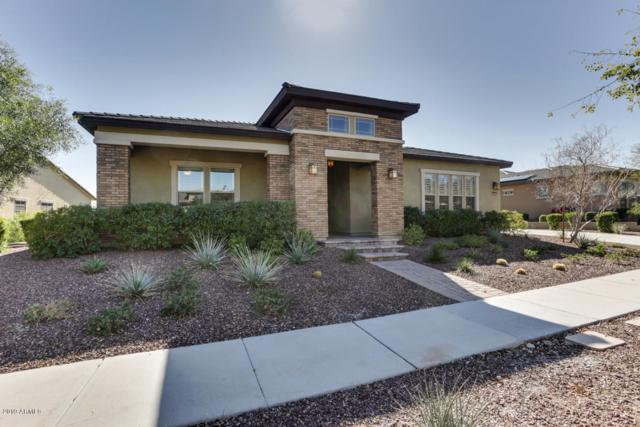 20579 W Meadowbrook Avenue, Buckeye, AZ 85396 (MLS #5881631) :: The Results Group