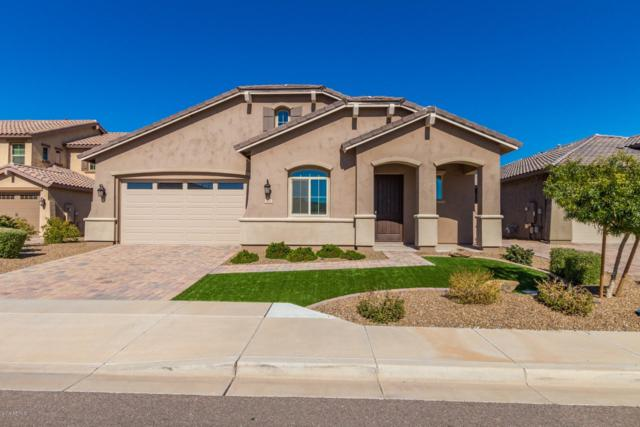 410 E Torrey Pines Place, Chandler, AZ 85249 (MLS #5881632) :: RE/MAX Excalibur