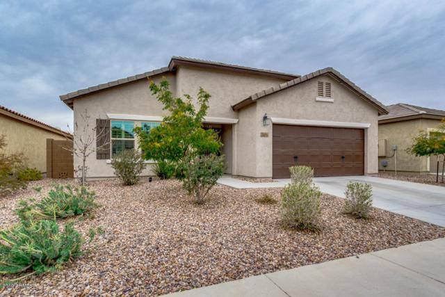 3416 N San Marin Drive, Florence, AZ 85132 (MLS #5881683) :: Lucido Agency