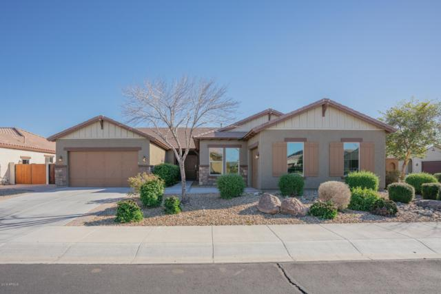 16089 W Harvard Street, Goodyear, AZ 85395 (MLS #5881687) :: RE/MAX Excalibur