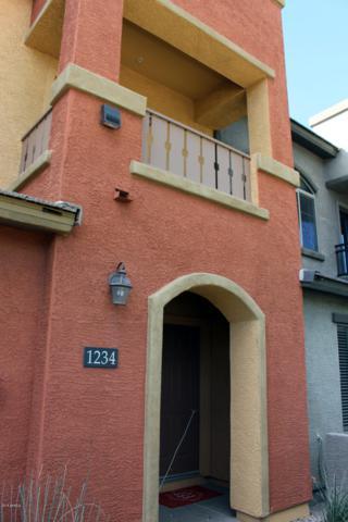 280 S Evergreen Road #1234, Tempe, AZ 85281 (MLS #5881732) :: Yost Realty Group at RE/MAX Casa Grande