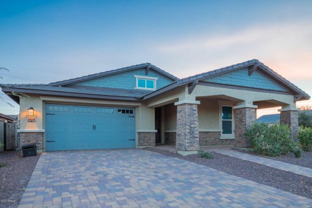 20471 W Briarwood Drive, Buckeye, AZ 85396 (MLS #5881770) :: Yost Realty Group at RE/MAX Casa Grande