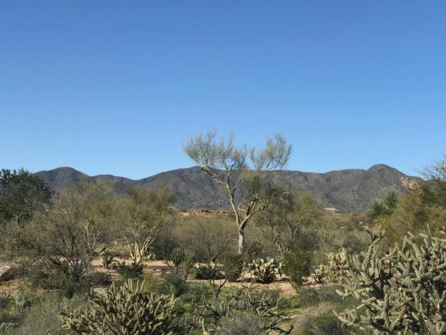 37932 N 104th Place, Scottsdale, AZ 85262 (MLS #5881909) :: The Laughton Team