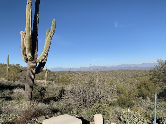 14012 E Coyote Road, Scottsdale, AZ 85259 (MLS #5881967) :: The Garcia Group
