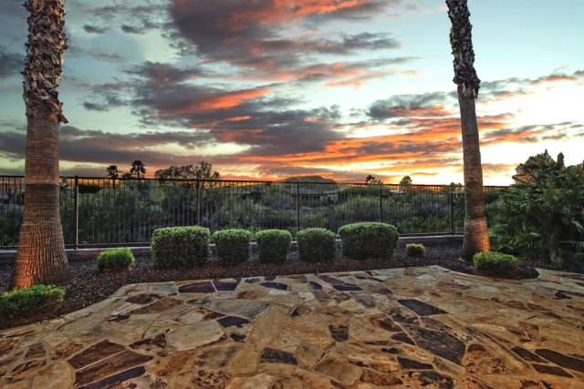 12989 W Kicking Horse Trail, Peoria, AZ 85383 (MLS #5881970) :: RE/MAX Excalibur