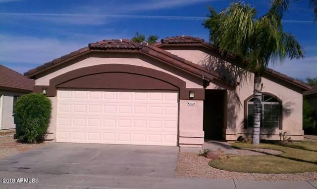2028 E Danbury Road, Phoenix, AZ 85022 (MLS #5881992) :: Yost Realty Group at RE/MAX Casa Grande