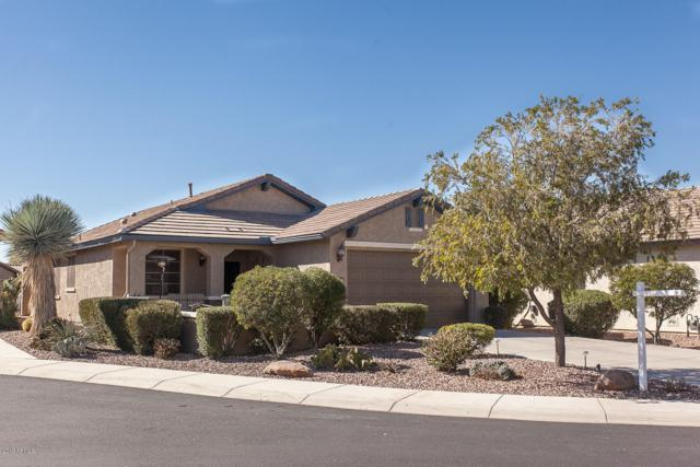 6523 W Mockingbird Court, Florence, AZ 85132 (MLS #5881994) :: The Property Partners at eXp Realty