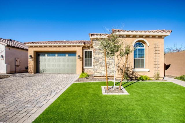 616 W Cantebria Drive, Gilbert, AZ 85233 (MLS #5881997) :: CC & Co. Real Estate Team