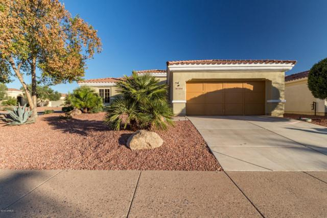 13846 W Figueroa Drive, Sun City West, AZ 85375 (MLS #5882000) :: Yost Realty Group at RE/MAX Casa Grande
