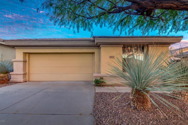 41609 N Cedar Chase Road, Anthem, AZ 85086 (MLS #5882012) :: The Daniel Montez Real Estate Group