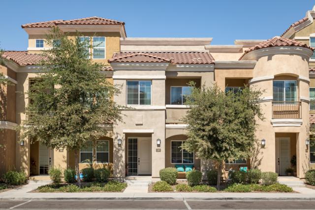124 N California Street #39, Chandler, AZ 85225 (MLS #5882103) :: Yost Realty Group at RE/MAX Casa Grande