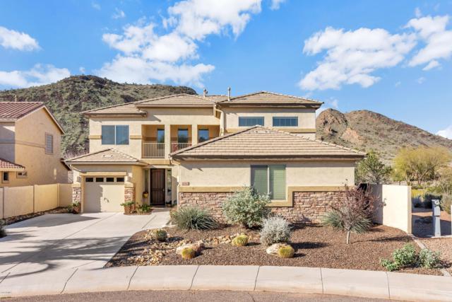 26312 N 55TH Drive, Phoenix, AZ 85083 (MLS #5882120) :: The Laughton Team
