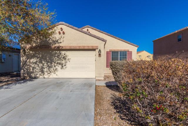 23612 W Bowker Street, Buckeye, AZ 85326 (MLS #5882204) :: The W Group