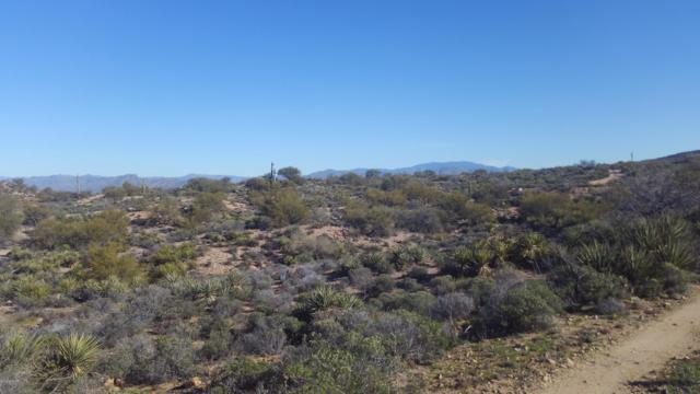 0 Apache Hills, Florence, AZ 85132 (MLS #5882295) :: Arizona 1 Real Estate Team