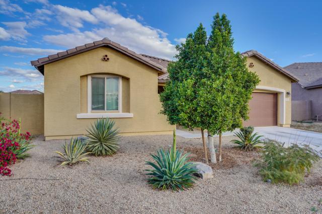 1725 N 161ST Drive, Goodyear, AZ 85395 (MLS #5882492) :: The Luna Team