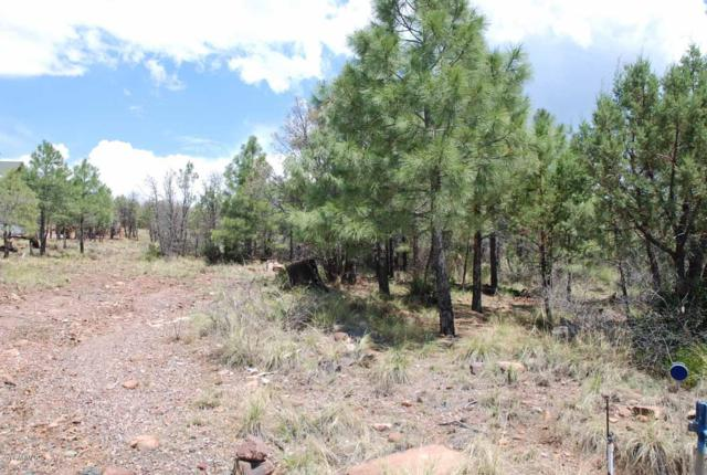 Lot 39 E Antelope Trail, Payson, AZ 85541 (MLS #5882530) :: Riddle Realty