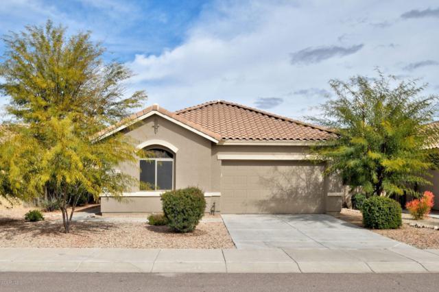 13345 S 176TH Drive, Goodyear, AZ 85338 (MLS #5882551) :: Lucido Agency