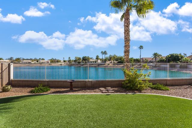 19923 N 78TH Lane, Glendale, AZ 85308 (MLS #5882552) :: Cindy & Co at My Home Group