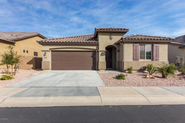 15911 N 109TH Lane, Sun City, AZ 85351 (MLS #5882604) :: The Laughton Team