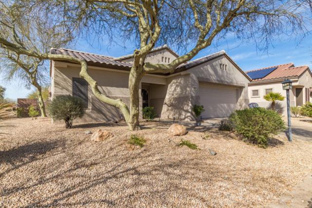 15521 W Coral Pointe Drive, Surprise, AZ 85374 (MLS #5882653) :: The Laughton Team