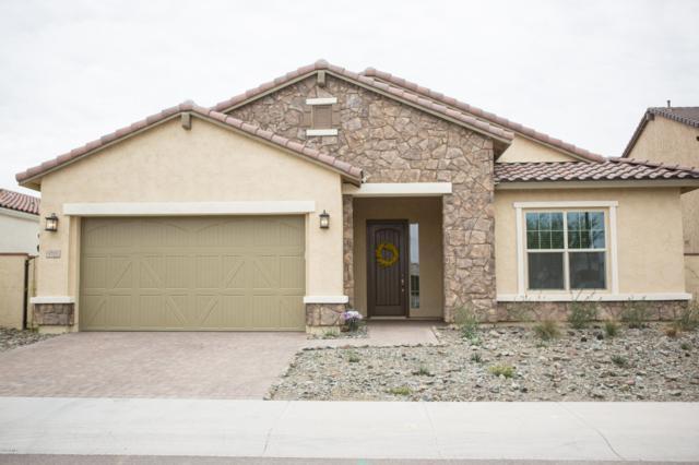 9705 E Telemetry Drive, Mesa, AZ 85212 (MLS #5882673) :: CC & Co. Real Estate Team