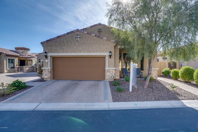9017 E Ivyglen Street, Mesa, AZ 85207 (MLS #5882718) :: Yost Realty Group at RE/MAX Casa Grande